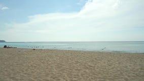 Unrecognizable girl in bikini walks along the beach stock footage