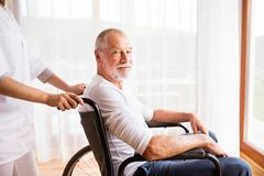 Nurse and senior man in wheelchair during home visit. Stock Images