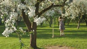 Unrecognizable mała dziewczynka cieszy się czas wolnego, kiwa na drewnianym huśtawkowym siedzeniu w kwitnie jabłoń ogródzie zdjęcie wideo