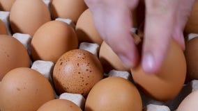Unrecognizable man`s hand take raw chicken eggs