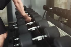 Unrecognizable man taking dumbbells at gym. Bodybuilder preparing for weightlifting workout, choosing equipment, copy space Royalty Free Stock Photo