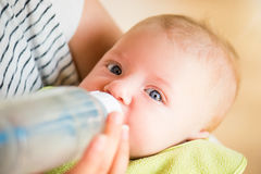 Unrecognizable mother feeding baby son, milk in bottle, close up Royalty Free Stock Photo