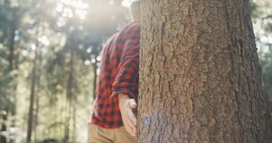 Close up of man`s hand touching tree on green forest background. Unrecognizable portrait of young man walking in a wood stock video footage
