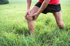 Unrecognizable runner in green field. Man with injured knee. Stock Image