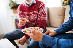 Unrecognizable senior father and adult son sitting on a sofa at Christmas time, eating biscuits. Unrecognizable senior father and adult son sitting on a sofa at royalty free stock image