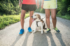 Unrecognizable senior runners with dog outside in sunny nature Stock Photo