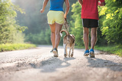 Unrecognizable senior runners with dog outside in sunny nature Royalty Free Stock Photos