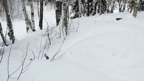 Unrecognizable woman in blue hooded jacket descends from the mountain on snowy path and falls. Side view stock footage