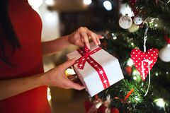 Unrecognizable woman in front of Christmas tree holding present Royalty Free Stock Photo