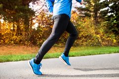 Young athlete running in park in colorful autumn nature. Unrecognizable young athlete in blue jacket running outside in colorful sunny autumn nature. Trail Royalty Free Stock Image