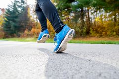 Young athlete running in park in colorful autumn nature. Unrecognizable young athlete in blue jacket running outside in colorful sunny autumn nature. Trail Stock Photos