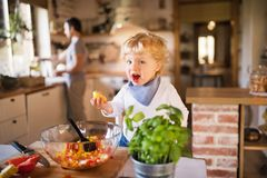 Young father with a toddler boy cooking. Stock Image