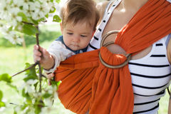 Unrecognizable young mother with her infant baby in sling. Outdor. Mother is carrying her child and showing nature details. Baby holds a flower in his hand Royalty Free Stock Image