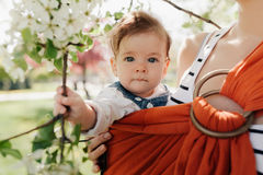 Unrecognizable young mother with her infant baby in sling. Outdor. Mother is carrying her child and showing nature details. Baby holds a flower in his hand Stock Image