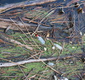 Unrecycled-Abfall Stockbild