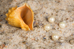 Unrefined natural sea salt, pearl and shell Stock Photos