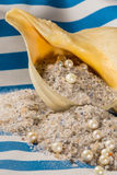 Unrefined natural sea salt, pearl and shell Royalty Free Stock Photos