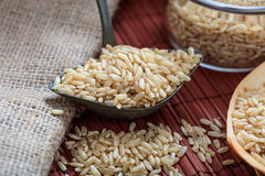 Unrefined rice and metallic old spoon Royalty Free Stock Photography