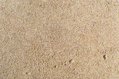 Unrefined Sand Texture. A background texture of unrefined, damp and grainy natural golden sand Royalty Free Stock Image