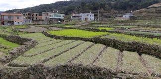 Unregelmäßiges Ackerland im Berggebiet Stockfotos