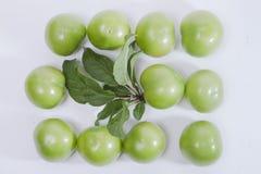 Unreife grüne Pflaume und Blatt Lizenzfreie Stockbilder