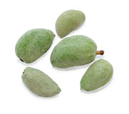 Unripe almonds Royalty Free Stock Photography
