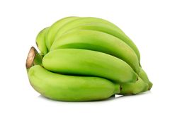 Unripe Banana. bunch Banana. green isolated on white background.  royalty free stock photography