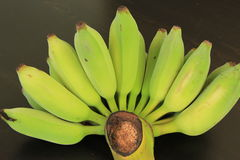 Unripe Green Banana. On black background stock images