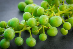 Unripe green grapes. Royalty Free Stock Image