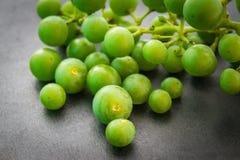 Unripe green grapes. Stock Photos