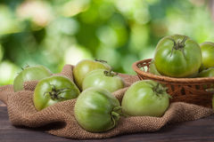 Unripe green tomatoes in a wicker basket on wooden table with blurred background Royalty Free Stock Image