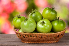 Unripe green tomatoes in a wicker basket on wooden table with blurred background Royalty Free Stock Photo