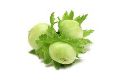 Unripe hazelnuts close-up stock photo