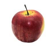unripened äpple Arkivbilder
