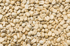 Unroasted coffee bean Stock Photo