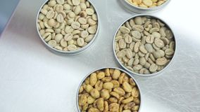 Unroasted coffee beans close up stock video footage