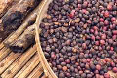 Unroasted organic arabica coffee beans. Tropical exotic Bali island, Indonesia. Authentic bali coffee on a coffee. Roasted coffee beans, can be used as a Stock Photo