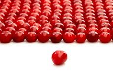 Uns únicos cereja e grupo de cerejas Imagens de Stock