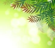 Uns artigos de papelaria verdes com folhas Fotografia de Stock Royalty Free
