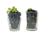 Uns dois vidros isolados com uva-do-monte fotografia de stock royalty free
