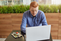 An unsatisfied young businessman with red hair and stylish haircut having lunch break in modern cafe eating sushi and working at h Royalty Free Stock Photography