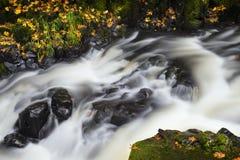 Unschärfe des flüssigen Stromes stockbilder