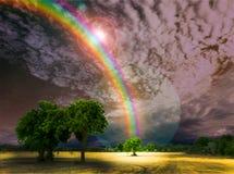 Unschärfegott segnen Regenbogendunkelheit und Himmelbaum im Park Stockfoto