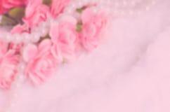 Unschärfehintergrund: Schöne rosa Blume mit Platz für Text Stockbilder