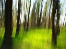 Unschärfenfrühlingswald Lizenzfreie Stockbilder
