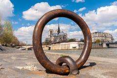 Unscharfe Ansicht von Notre Dame-Abflussrinne Ring Stockbild