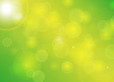 Unscharfe Hintergrund Bokeh-Sommer-Feder Lizenzfreies Stockfoto