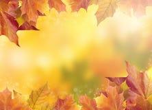 Unscharfer heller Herbsthintergrund Abstraktes buntes bokeh Lizenzfreies Stockfoto