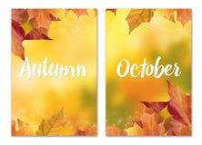 Unscharfer heller Herbsthintergrund Abstraktes buntes bokeh Stockfotos