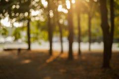Unscharfer Hintergrund der Glättung des Parks lizenzfreies stockbild
